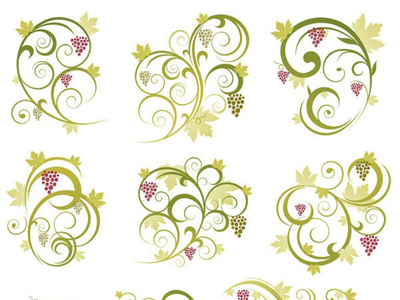abstract-floral-vine-grape-ornament-vector