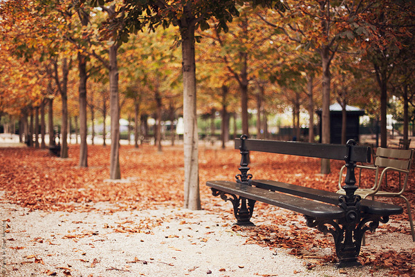 Autumn-in-Paris-photo
