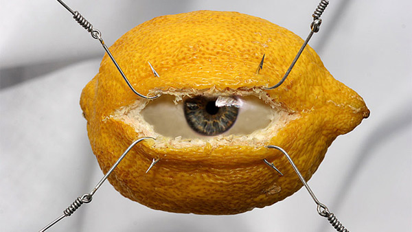 19-Photo-Manipulation-eye-of-the-lemon