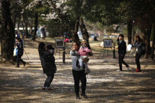 A-woman-holding-her-baby-tries-to-catch-a-cherry-blossom