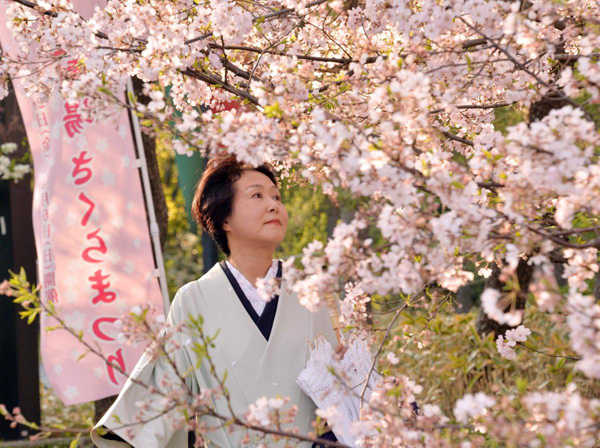 A-woman-wearing-a-kimono-looks-at-cherry-blossoms-in-Tokyo