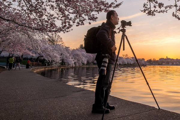 Tony-Chung-of-Washington-photographs-the-cherry-blossoms