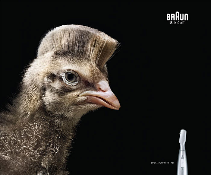 funny-ads-with-animals-24-2