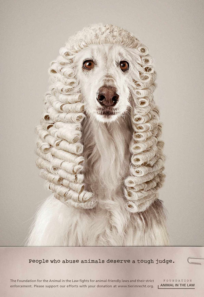 funny-ads-with-animals-25-3