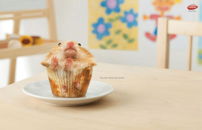 funny-ads-with-animals-3-2