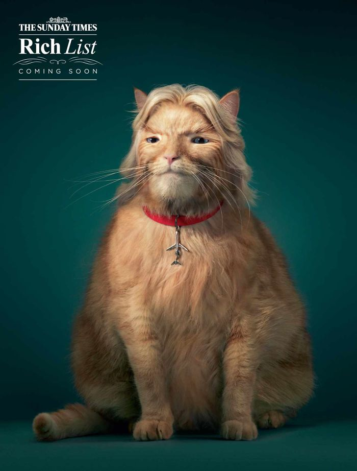 funny-ads-with-animals-8-1