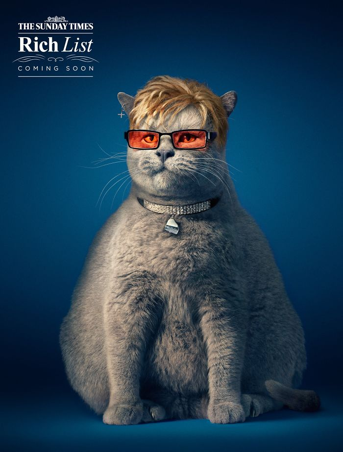 funny-ads-with-animals-8-2