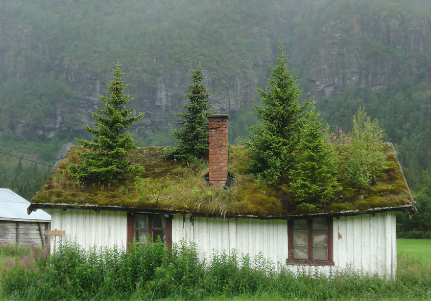 fairy-tale-viking-architecture-norway-15