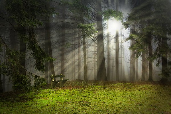 Add Light Rays to a Photo in Photoshop