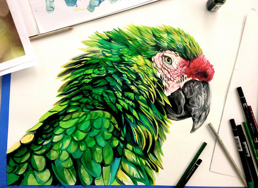 Pencil And Marker Illustrations of Wild Animal Spirits By Katy Lipscomb 7