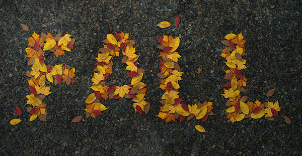 Realistic Autumn Leaves Text Effect
