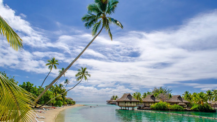 Exotic Beach and Accommodation desktop wallpaper