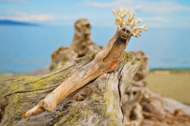 driftwood-sculptures-by-debra-bernier-3