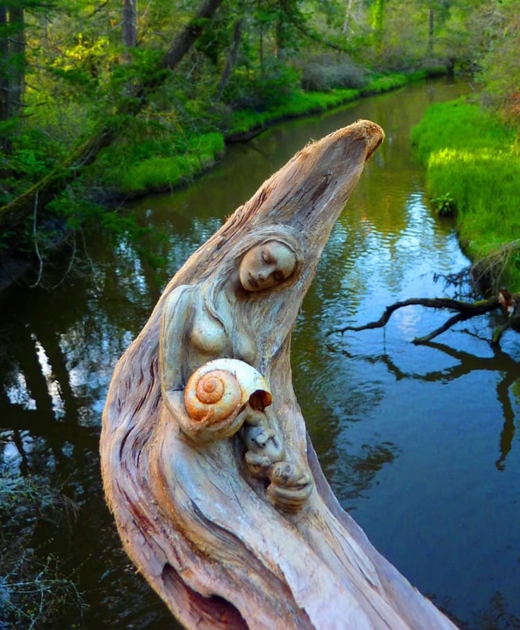 driftwood-sculptures-by-debra-bernier-6