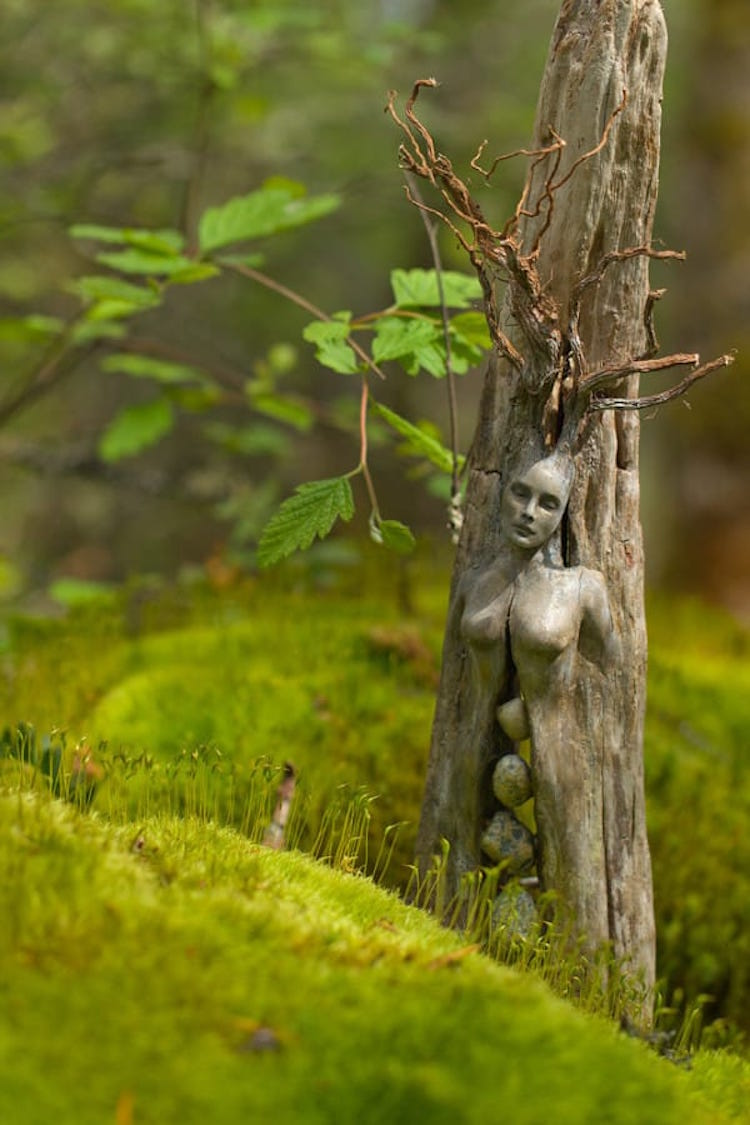 driftwood-sculptures-by-debra-bernier-8