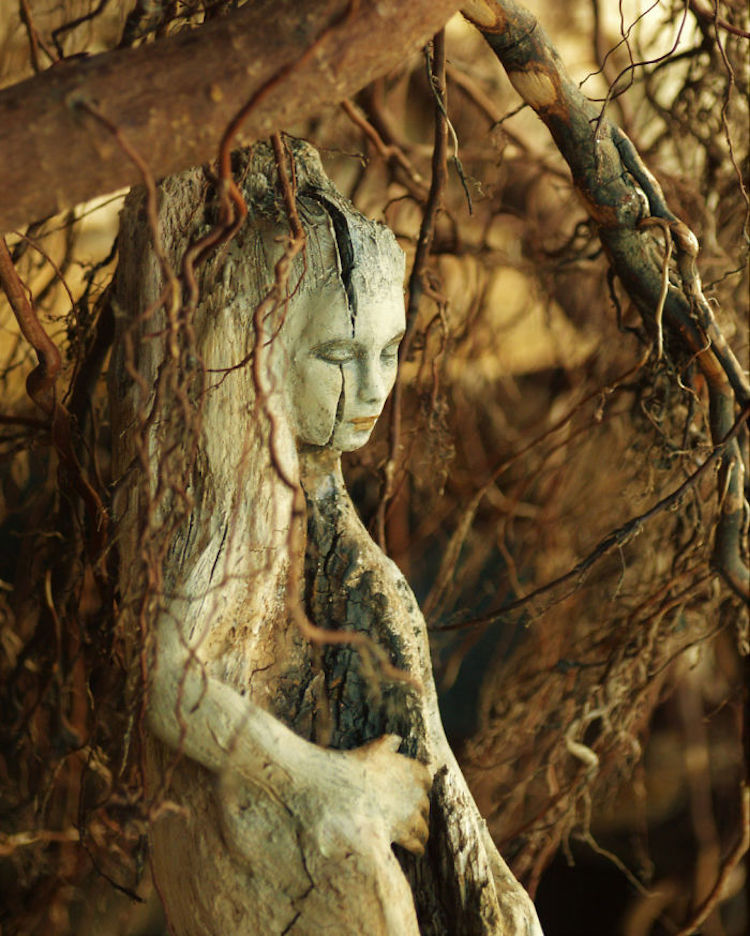 driftwood-sculptures-by-debra-bernier-9