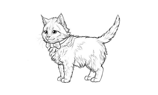 How to Draw a Super Cute Kitten Step by Step Photoshop Tutorials 2017