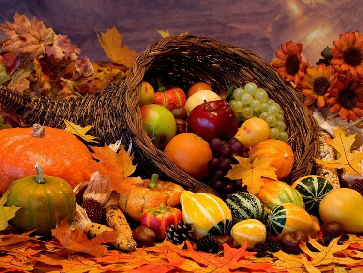 thanksgiving fruits background