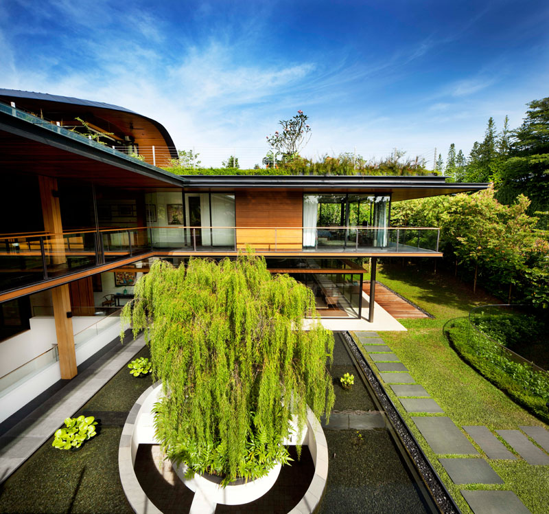 Modern Ficus House in Singapore